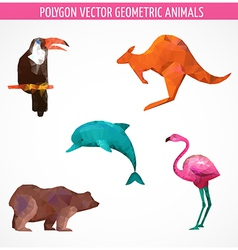 collection of colorful polygonal animals vector image