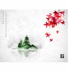red japanese maple leaves and island with green vector image vector image