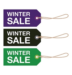 Winter sign set vector