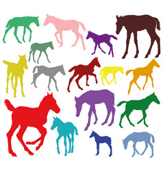 Colorful set of silhouettes of foals vector