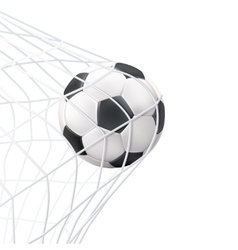 Soccer ball in the net pictogram vector