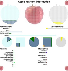 Apple mosaic and nutrient information vector