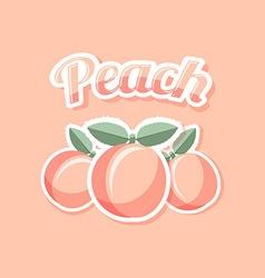Retro peach vector image vector image