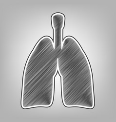Human anatomy lungs sign pencil sketch vector