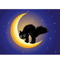 Black cat on moon vector