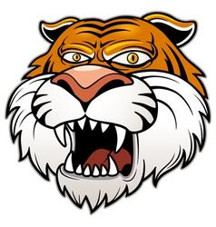 Head Tiger vector image