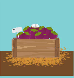 Mangosteen in a wooden crate vector