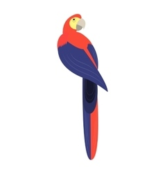Parrot - vector image