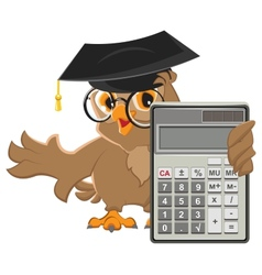 Owl teacher holding calculator vector image vector image