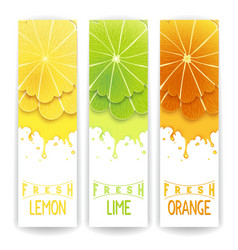 Citrus fresh juice vector