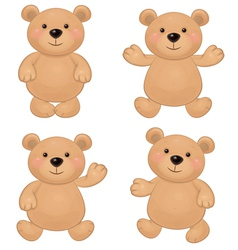 bears vector image vector image
