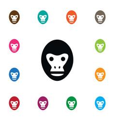 Isolated orangutan icon baboon element can vector