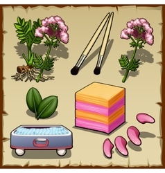 Variety of plants flowers and cosmetics set vector