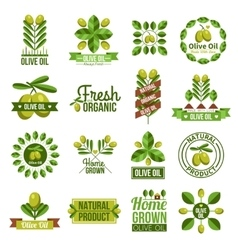 Organic natural olive oil label set vector
