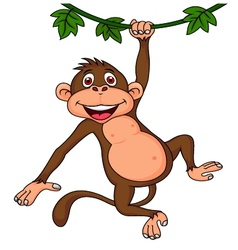 Cute monkey hanging vector image vector image