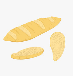 french bread and vector image vector image