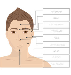 laser hair removal male area face depilation man vector image vector image