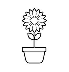 Potted flower nature decoration interior plant vector