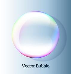 Transparent soap bubble vector image vector image