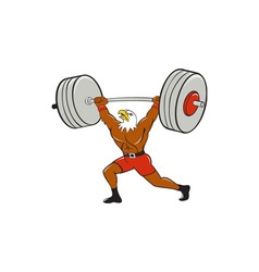 Bald eagle weightlifter lifting barbell cartoon vector