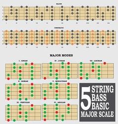 Bass tutor part 1 vector