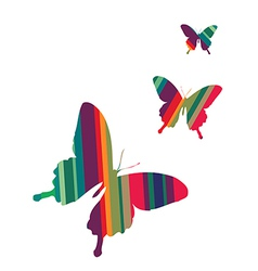 Butterflies on white background vector image vector image