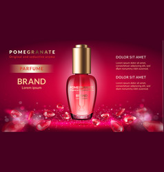pomegranate perfume ads vector image