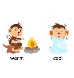 Opposite words warm and cool vector