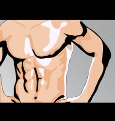 Male torso vector