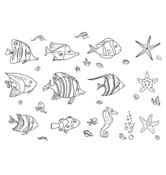 Set with sea fishes contour vector