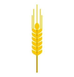 Ear of barley icon flat style vector
