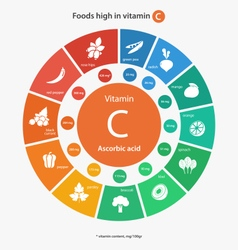 Foods high in vitamin c vector