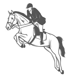 Equestrian sport jockey on a jumping horse vector