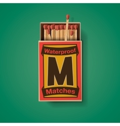 Matchbox and matches top view vector