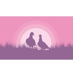 Romance dove on hill valentine theme vector