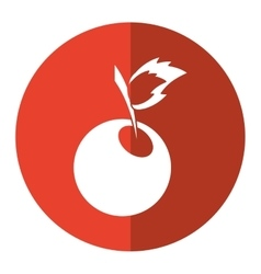 Sweet cherry fruit red circle shadow vector