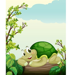 A turtle lying on dry wood vector image