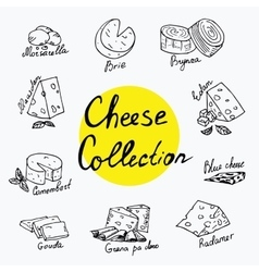 Cheeses collection isolated vector