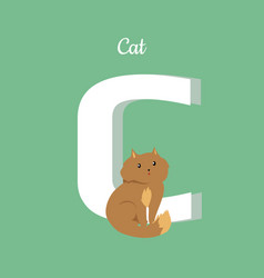 Cat with letter c isolated domestic kitten abc vector