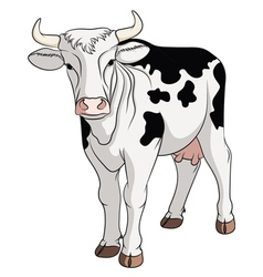 Colored cow isolated on white background vector