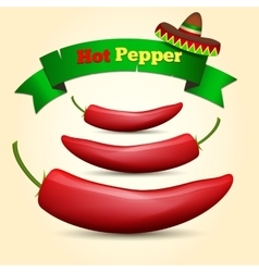 Hot Chile pepper vector image