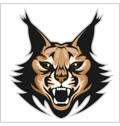 Lynx mascot logo Head of lynxes isolated vector image