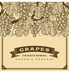Retro grapes harvest card brown vector