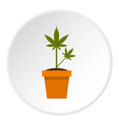 Cannabis plant icon circle vector