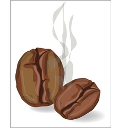 Coffee beans with smoke on a white background vector image vector image