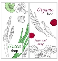 Healthy organic food Green shop vertical banner vector image