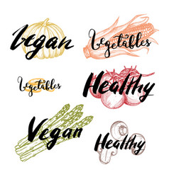 healthy vegan food hand drawn labels set vector image vector image