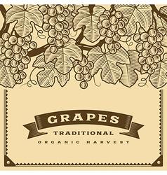 Retro grapes harvest card brown vector
