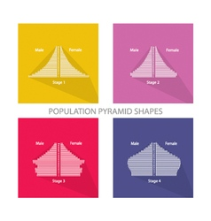 The 4 stages of population pyramids graphs vector