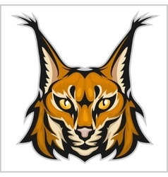 Lynx mascot logo head of lynxes isolated vector